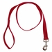 Red 1 in. x 4 ft 1-Ply Nylon Leash