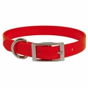 buy discount  Red 3/4 in. Standard Day Glow Collar