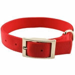 shop Red Double Ply Nylon Collar