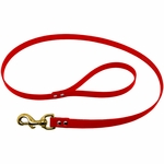 shop Red Leash