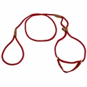 buy discount  Red Martingale Style Dog Walker