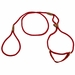 Red Martingale Style Dog Walker