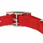 shop Red Nylon Dog Collar Back of Buckle Detail