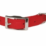 shop Red Nylon Dog Collar Front of Buckle Detail