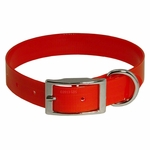 shop Red Standard Day Glow Collar