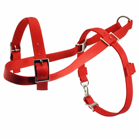 Scott Orange Roading Harness with Snap Hook-Up
