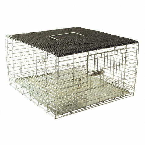 Shaded Quail Carrier 12 in. x 12 in. QC1212/KD/S by SW Cage
