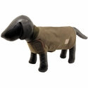 buy discount  Shelter Cloth Dog Coat on Mannequin