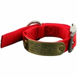 shop Small Collar with Name Plate in Tightest Position