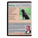 buy discount  Smartwork Transition Phase 3: Late Transition Drills DVD back
