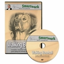 buy discount  Smartwork Walking Baseball Made Simple DVD with Evan Graham