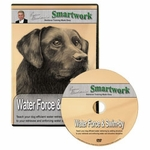 shop Smartwork -- Water Force & Swim-By DVD by Evan Graham