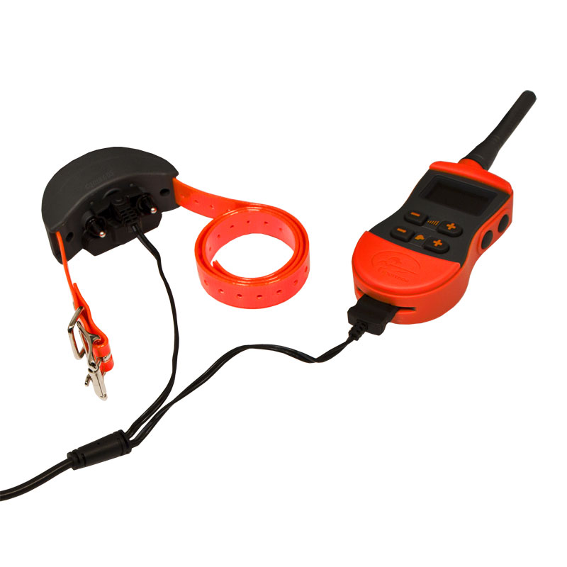 SportDOG SD-1275E Transmitter and Collar on Charger