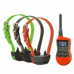 shop SportDOG SportTrainer SD-875 3-dog