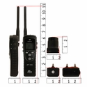 buy discount  SPT 2432 Collar and Transmitter Scaled