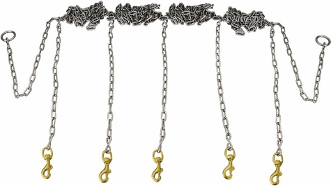 Stainless Steel Chain Gang 5-dog -- Chain Only