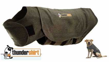 How To Make Your Own Thundershirt For Dogs