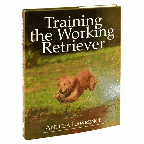 Training the Working Retriever by Anthea Lawrence