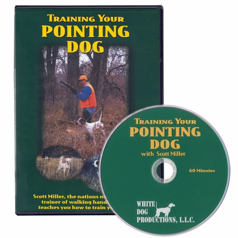 Training Your Pointing Dog with Scott Miller DVD