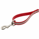 buy discount  Tree Tie Lead with Chain Handle Detail