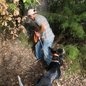 buy discount  TufFlex Chain Tree Lead on a Hound as Snap Lead