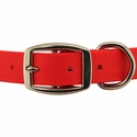 buy discount  TufFlex Collar Front of Buckle Detail
