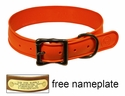 "WigWag 1-1/4"" Large Dog Collar -- Fits 18-23"" Neck"