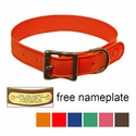 "buy discount  WigWag 1"" Medium Dog Collar -- Fits 14-19"" Neck"