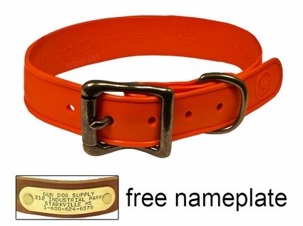 """WigWag 1"""" Small Dog Collar -- Fits 12-15"""" Neck"""