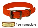 "WigWag 1"" Small Dog Collar -- Fits 12-15"" Neck"