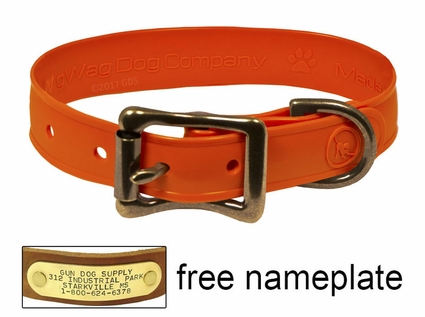 "WigWag 3/4"" Petite Dog Collar -- Fits 9-12"" Neck"