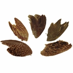 shop Wings -- Game Birds (Grouse, Pheasant, Quail)