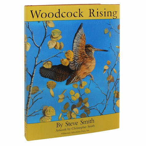 Woodcock Rising by Steve Smith