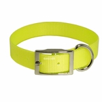 shop Yellow Standard Day Glow Collar