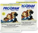 12 MONTH Program White: For dogs 46-90 lbs