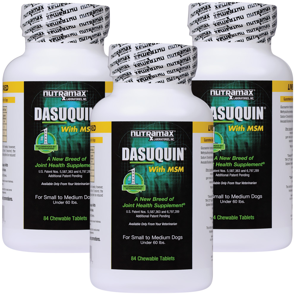 3 pack dasuquin for small medium dogs under 60 lbs with msm 252 chewable tabs. Black Bedroom Furniture Sets. Home Design Ideas