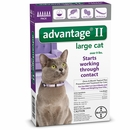 6 MONTH Advantage II Flea Control for Large Cats (over 9 lbs)