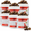 6-PACK Azoflora™ Kidney Support (540 Soft Chews)