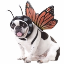 Animal Planet Butterfly Dog Costume - Small