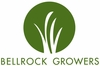 Pet Greens by Bell Rock Growers