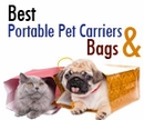 Best Portable Pet Carriers & Bags