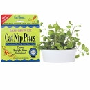 Cat A'bout Cat Nip Plus Tub - Single Size (250 grams)