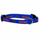Florida Dog Collars & Leashes