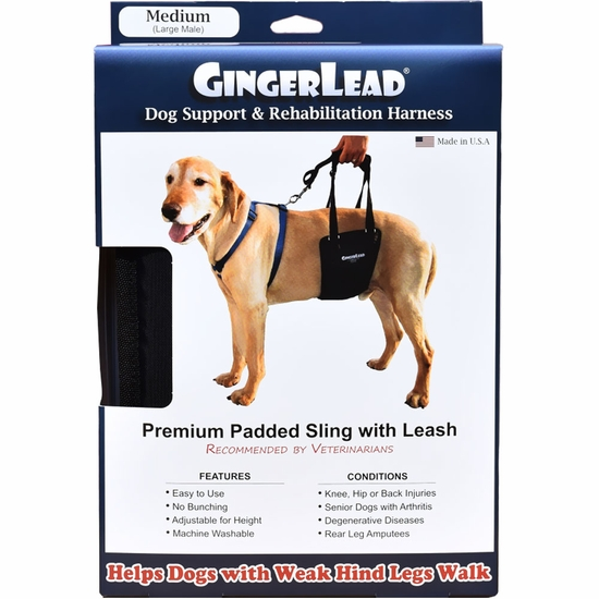 GingerLead Dog Support & Rehabilitation Harness - Medium (Large Male)