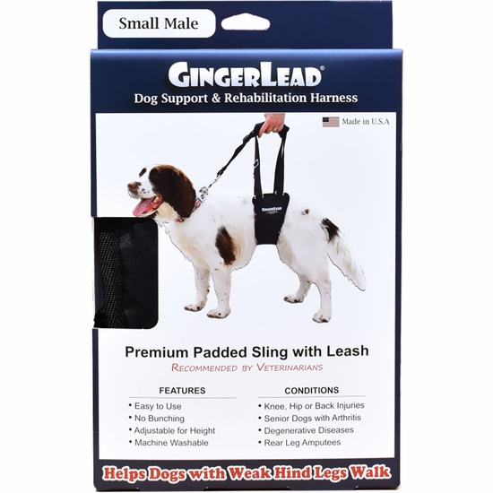 GingerLead Dog Support & Rehabilitation Harness - Small Male