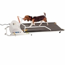 GoPet Treadmill - Small-Medium (<132lbs)