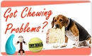 Got Chewing Problems?