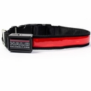 Halo Mini LED Safety Dog Collar Red - Medium
