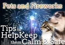 Help dogs & cats that are nervous with fireworks | HealthyPets