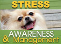 Holiday Stress Awareness Guide